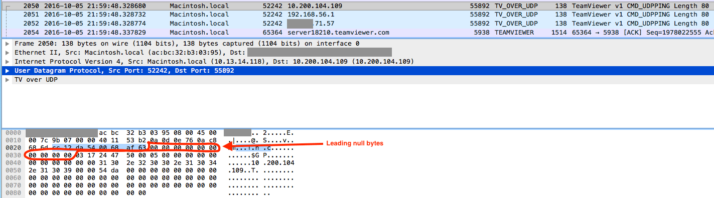 teamviewer null bytes inserted into UDP messages