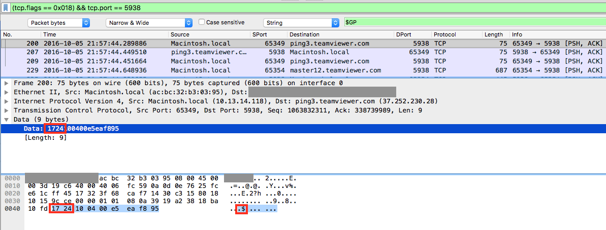 TeamViewer network protocol payload analysis