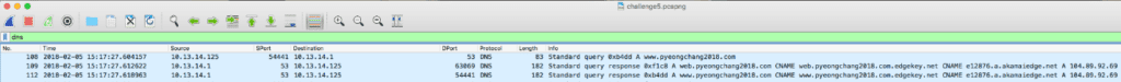 wireshark pcap analysis puzzle 5 dns analysis 1 of 4